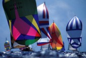 Colourful sails and spinnakers