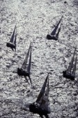 Aerial of Swan fleet in Sardinia