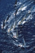 Fleet of Farr 40 racing yachts approaching the windward mark