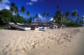 Fishing boats lined up on sandy beach, Nevis, Caribbean