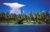 Tahitian Island. Anvil shaped cloud in clear blue sky over palm trees