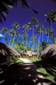 Club Med Guest Houses on Moorea Beach, French Polynesia