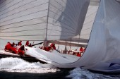 The crew of classic J Class yacht Endeavour work together to pull onboard her massive spinnaker