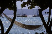 Hammock between two trees by the beach, Caribbean