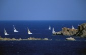 Swans racing in the waters off Porto Cervo, Sardinia