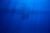 Keel of sailing yacht and rays of sunlight underwater
