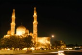 Mosque lit by night, Dubai - United Arab Emirates
