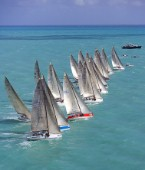 Startline during Acura Key West Race Week