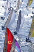 Fleet during a regatta