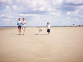 Family walking on the beach with a dog