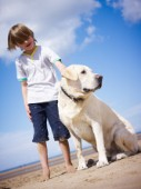 Boy standing on the beach petting a dog