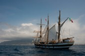 Tall ship Palinuro sailing