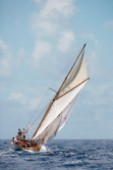 Thalia sails in the 2008 Antigua Classic Yacht Regatta, Antigua, British West Indies.