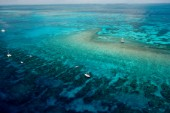 Both privately owned and commercial dive boats appear tethered to  mooring buoys on Molasses Reef, Key Largo, Florida.  This aerial view provides a prospective of the spur and groove type of coral formation typical in the Florida Keys, wherein the coral formations are separated by large sand channels.  Nearby  unmanned Molasses Reef Light marks a shallow area of the reef and also serves as a collection point for marine observations collected as data for NOAA.