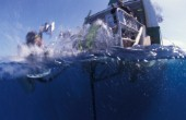 Diver jumps from the boat in the water Great Barrier Reef & Coral Sea/Australia.  Juergen Freund/Aurora Photos/Kos Pictures
