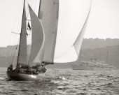 Argyll heads for the finishing yacht Talitha in the Blue Bird Cup against Skylark 2011